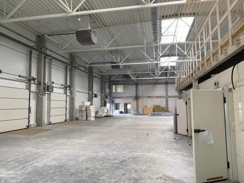budowa hal przemyslowych
